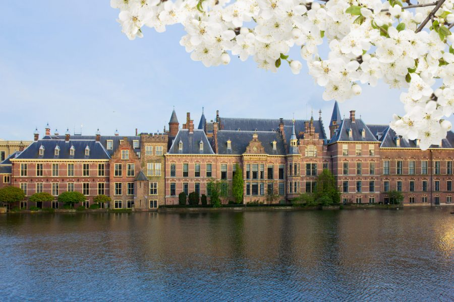 Binnenhof Dutch Parliament at spring, The Hague Den Haag, Netherlands